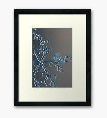 Towering snow crystal Framed Print