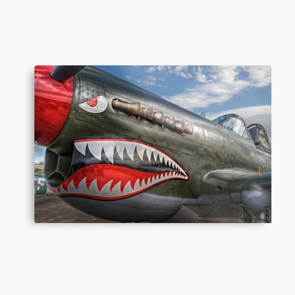 Curtiss P-40 Kittyhawk Metal Print