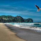 Onemana Beach New Zealand by francesca47