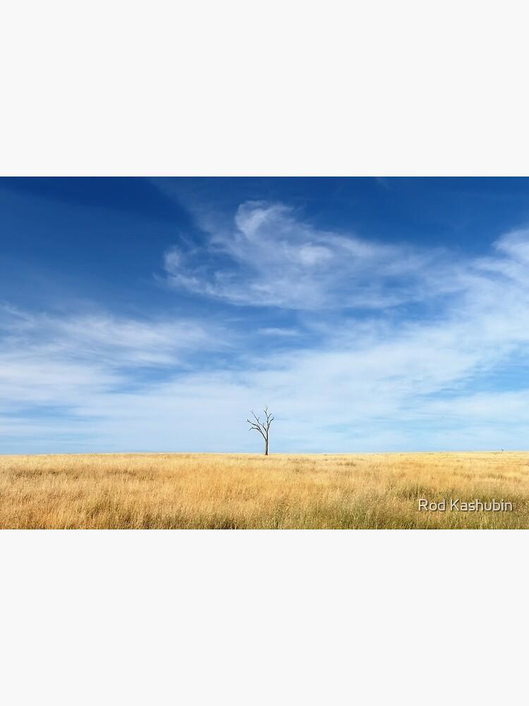 A Lone Tree by RodKashubin
