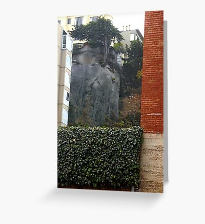 Bricks & Ivy-A Study In Contrasts Greeting Card