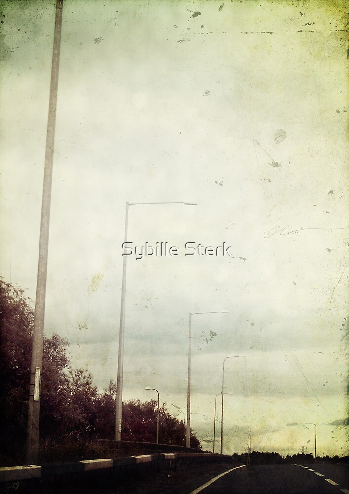 The Open Road by Sybille Sterk