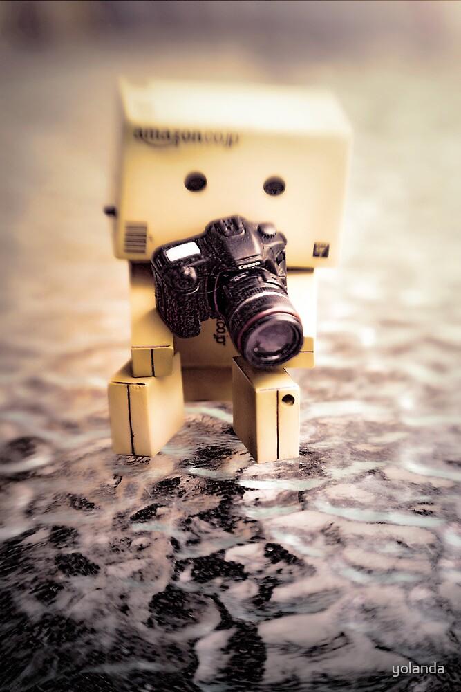 Danbo and Camera by yolanda
