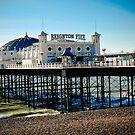 Brighton pier by Pat Shawyer