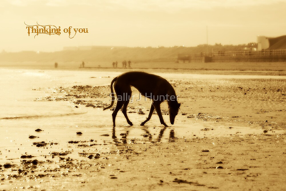 Thinking of you by Sally J Hunter