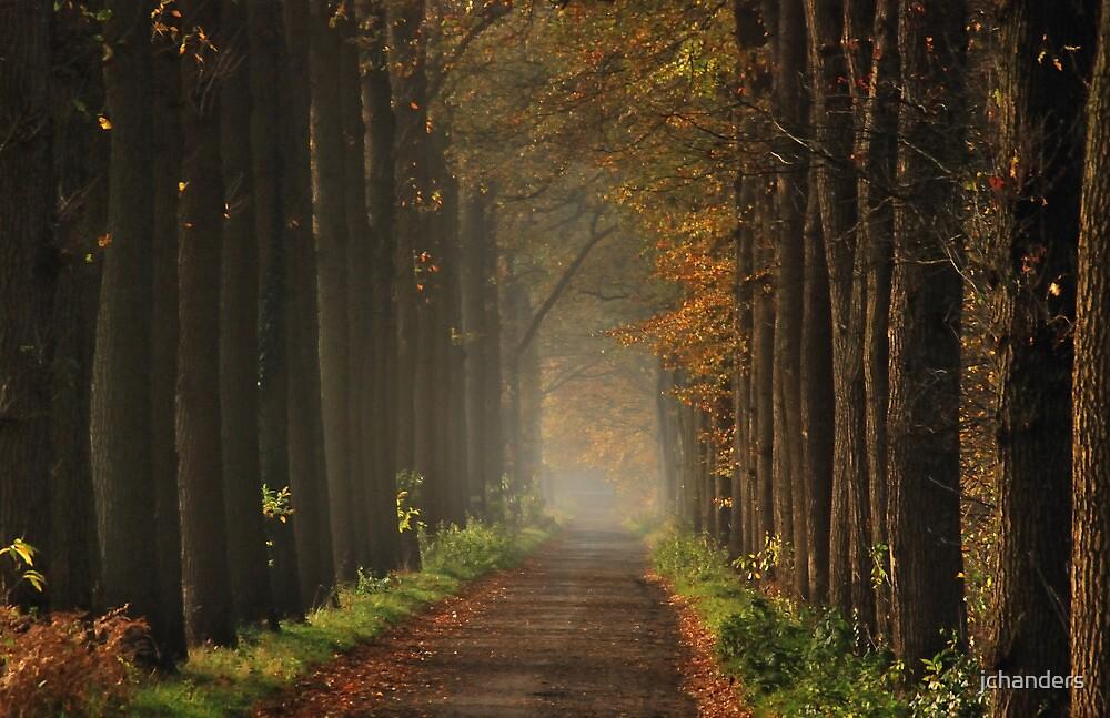 On the lane towards autumnal splendour by jchanders