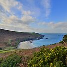 Cornwall: Above Portheras Cove by Rob Parsons