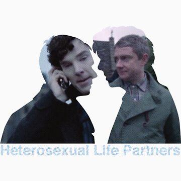 Heterosexual Life Partners by claudiasana