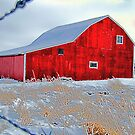 Winter Barn by Darcy Overland