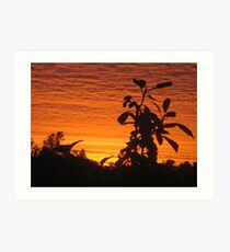 Sunrise a colourful start to the day Art Print