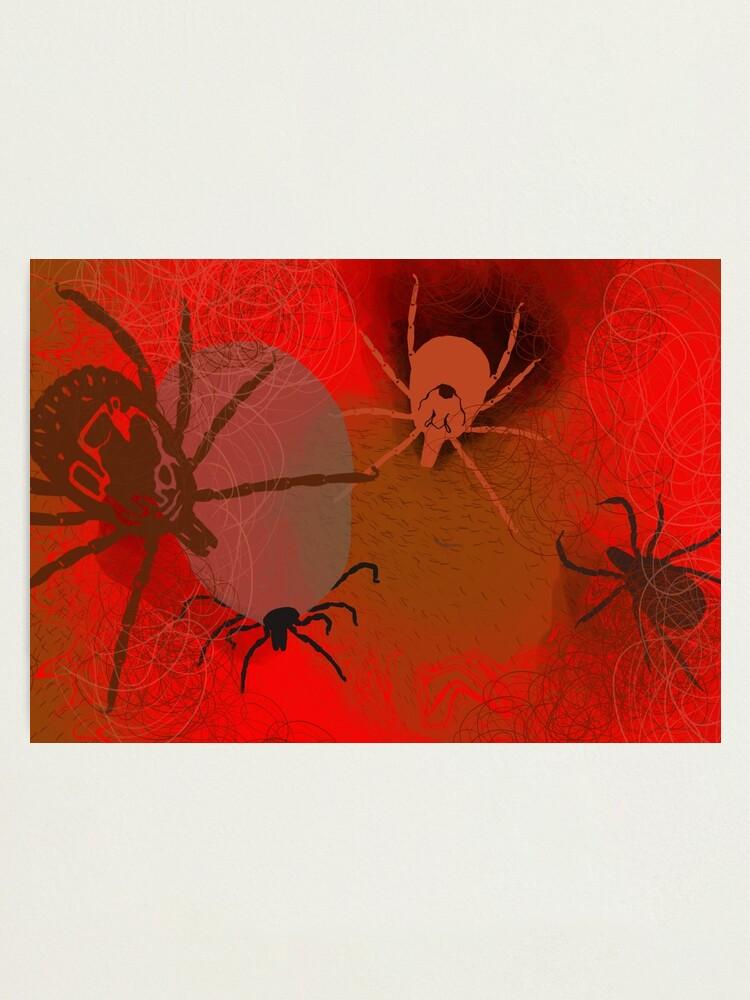 Alternate view of Ticks Photographic Print