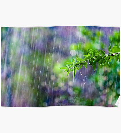 crazy rain Poster
