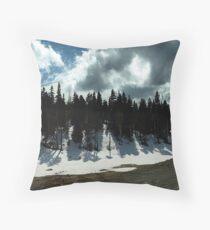 Strathcona Park Throw Pillow
