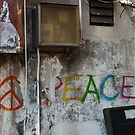 Peace....It's Where You Find It by paulmcardle