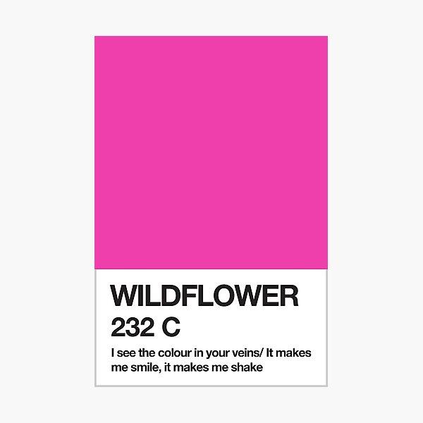 Wildflower Pantone Swatch Photographic Print