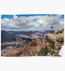 Jesse La Flair - Grand Canyon  Poster