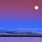 Minus 20 Within Moon by Dragomir Vukovic