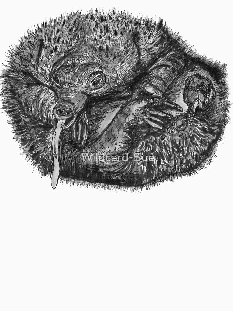 Elizabeth the Baby Echidna by Wildcard-Sue