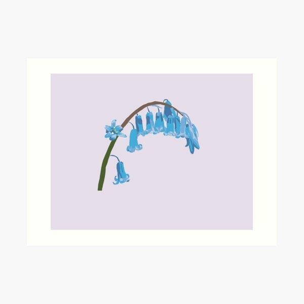 Bluebells (v3) Art Print