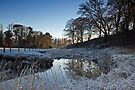 River Wansbeck In Winter by David Pringle