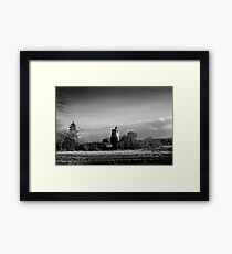Winter Sun in Macollop Framed Print