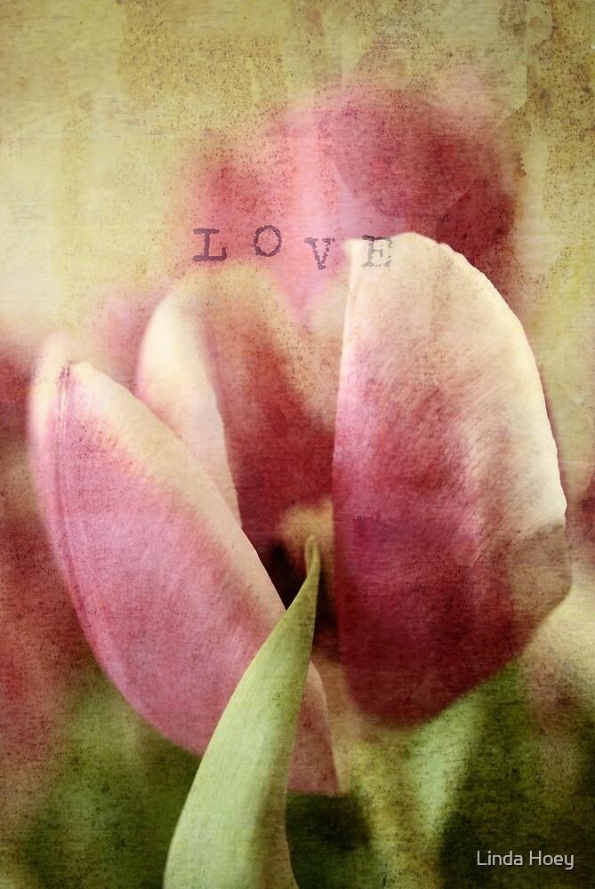 Flower Love 2 by Linda Hoey