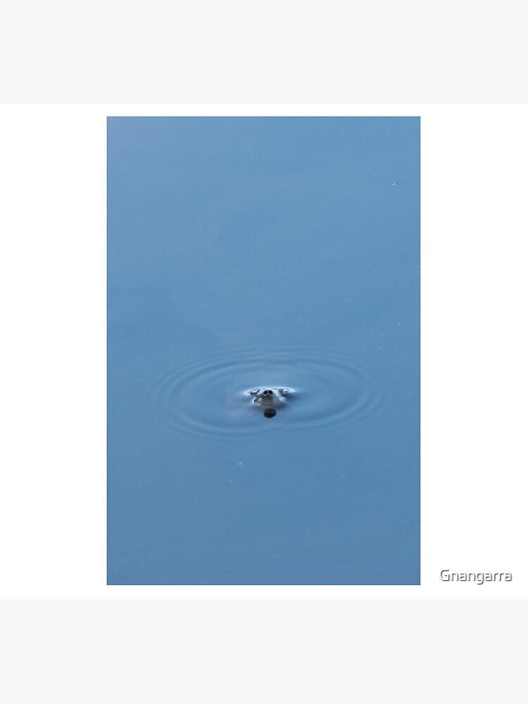 I see you by Gnangarra