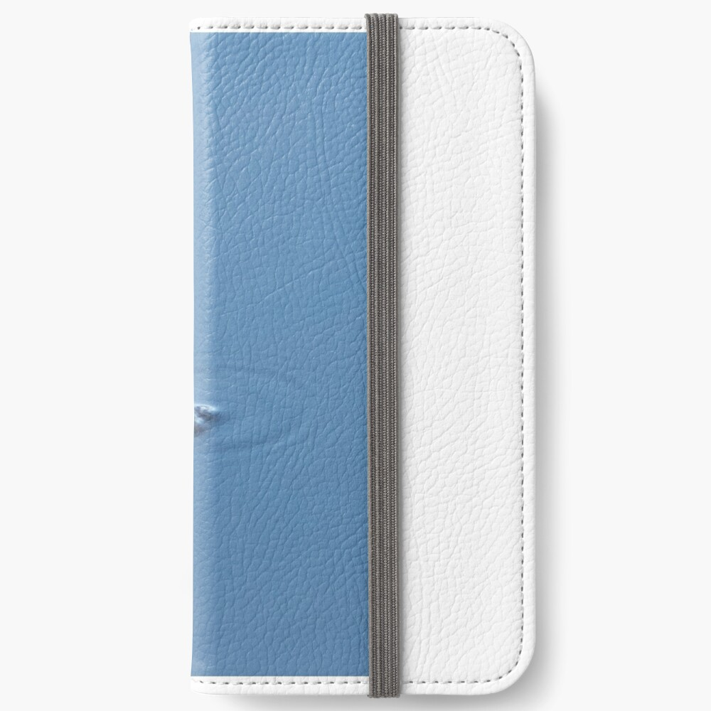 I see you iPhone Wallet
