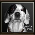 Hocky Puck by michaelasamples