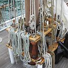 Shipshape - Lines at the foremast by Ray Vaughan