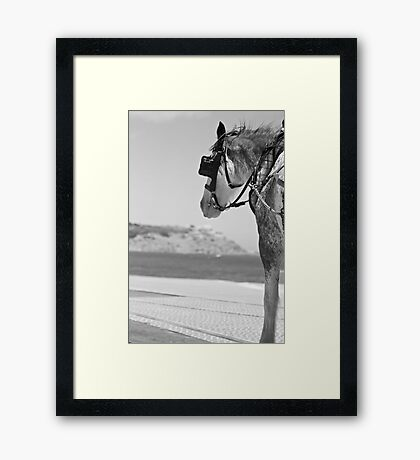 Time to enjoy the view Framed Print