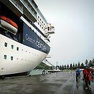 New Zealand Cruise January 2012 by Marcia Luly