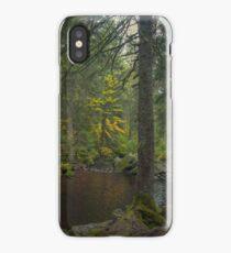 Fairy Realm iPhone Case/Skin