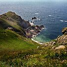 The rugged coastline of the Cotentin: The point of Jobourg by cclaude