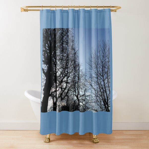 Bare branches, blue winter sky Shower Curtain