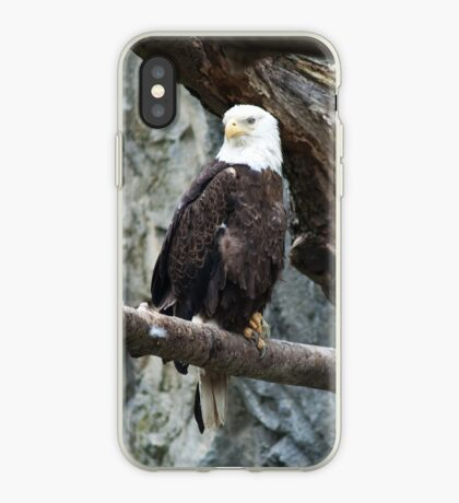 Lone Eagle iPhone Case