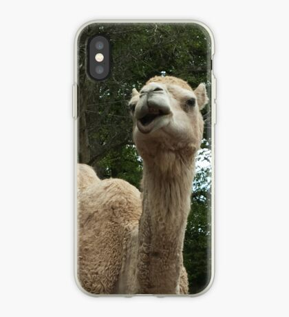Laughing Camel iPhone Case