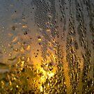 Condensate Sunrise by Technohippy