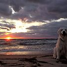 Ditte and the sunset by Trine