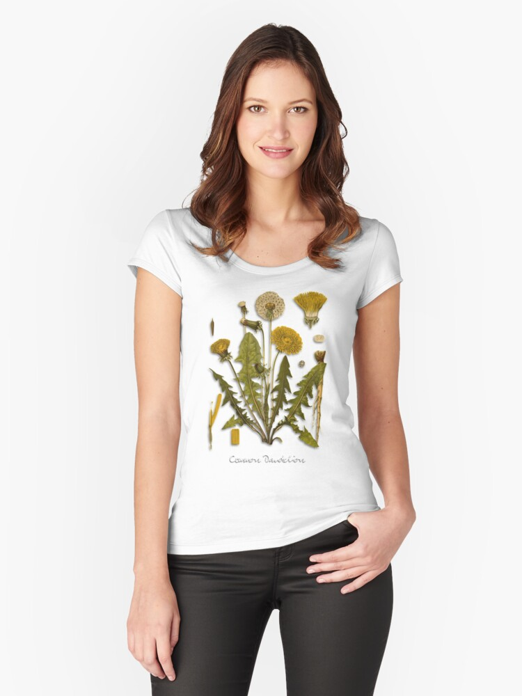 Dandelion Women's Fitted Scoop T-Shirt Front