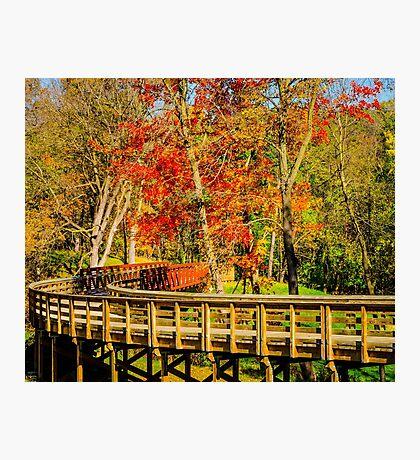 Walking Into Autumn Photographic Print