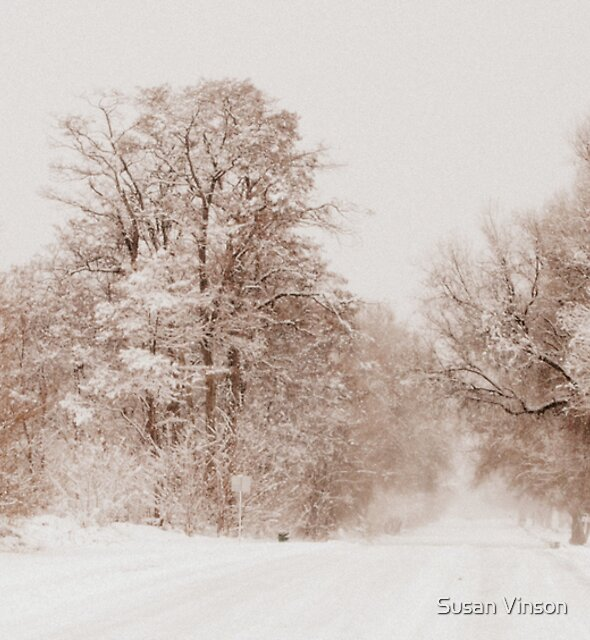 Winter Abyss by Susan Vinson