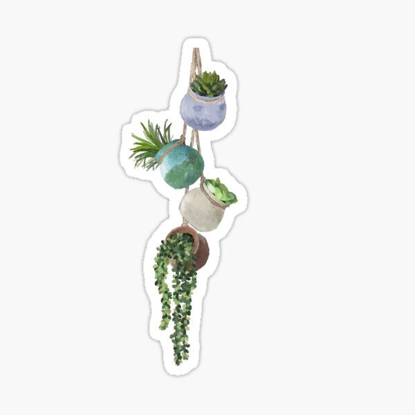 Hanging Succulents Sticker