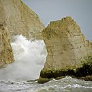 Erosion in Action by mikebov