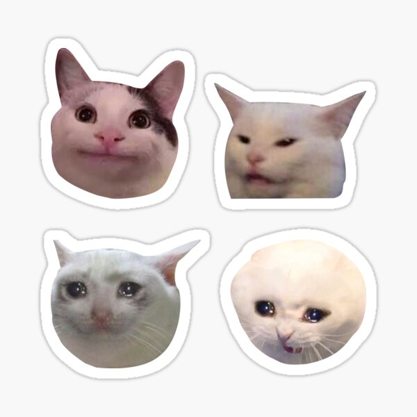 Meme Cats Pack d'autocollants Sticker