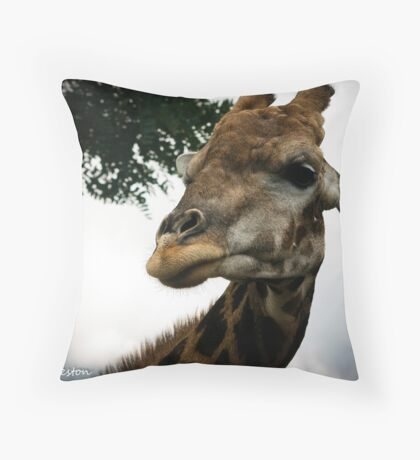 The Air up there  Throw Pillow