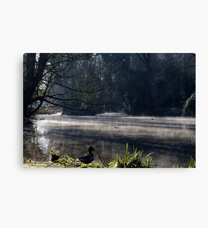 Wake Up to the Morning Canvas Print