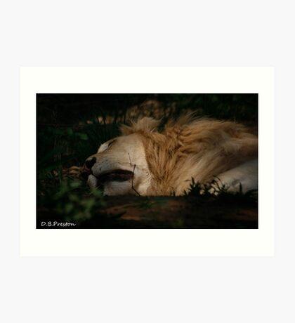The King sleeps Art Print