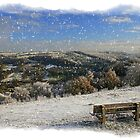 Snow on the common by Jeff  Wilson