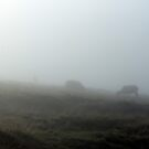 More Fog, less Sheep by Mark Smitham